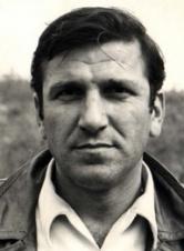 韦利米尔·巴塔·日沃伊诺维奇