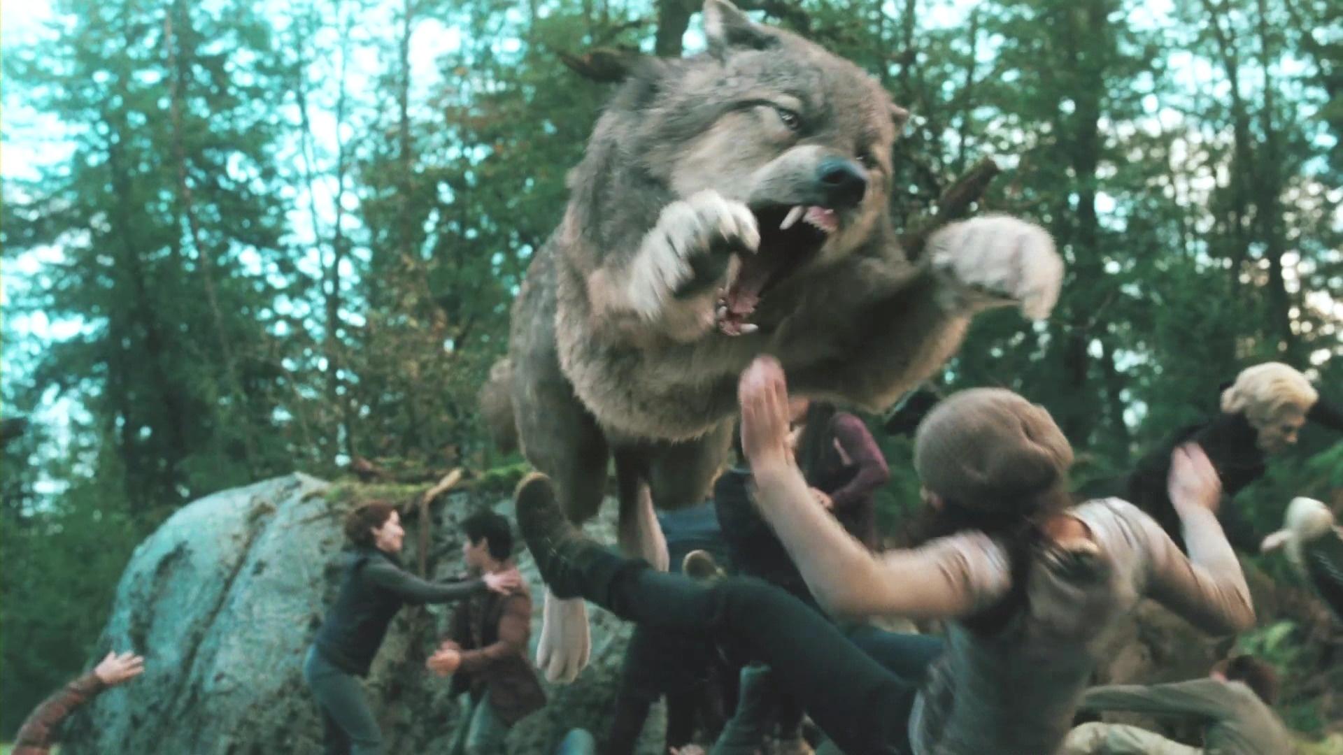 鬃岩狼人-由一个电影里面的人可以变成动物格斗的是什么电影
