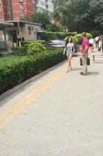 王思聪喊话朱圣祎接诉讼函 女方回呛:你哪位?