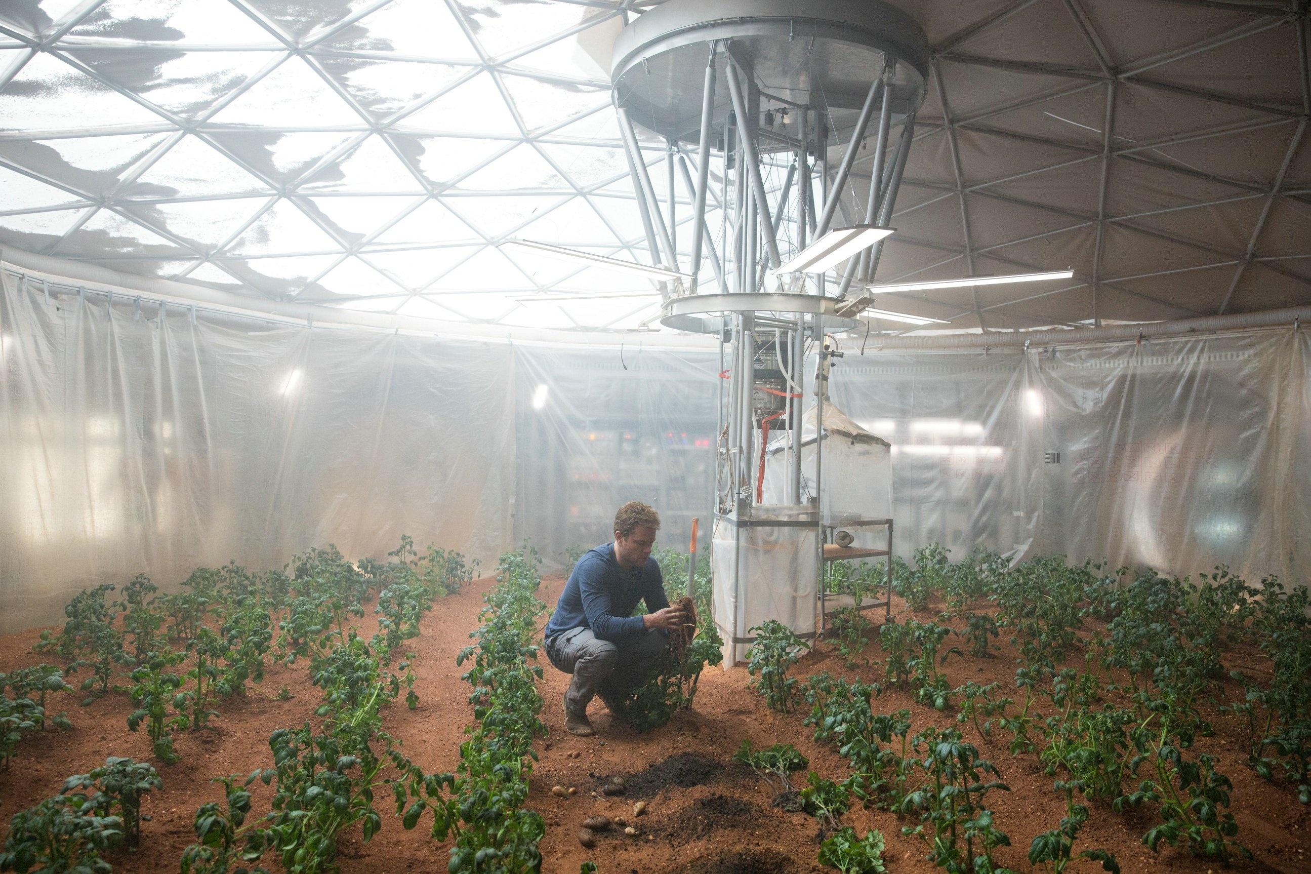 火星胆机811电路图