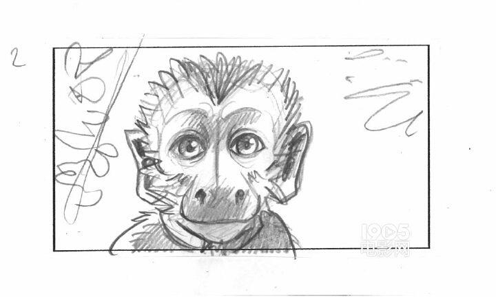 《亚马逊萌猴奇遇记》曝分镜头手稿 考验动物演技