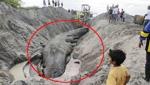 震惊!修路基地竟挖出千年巨兽