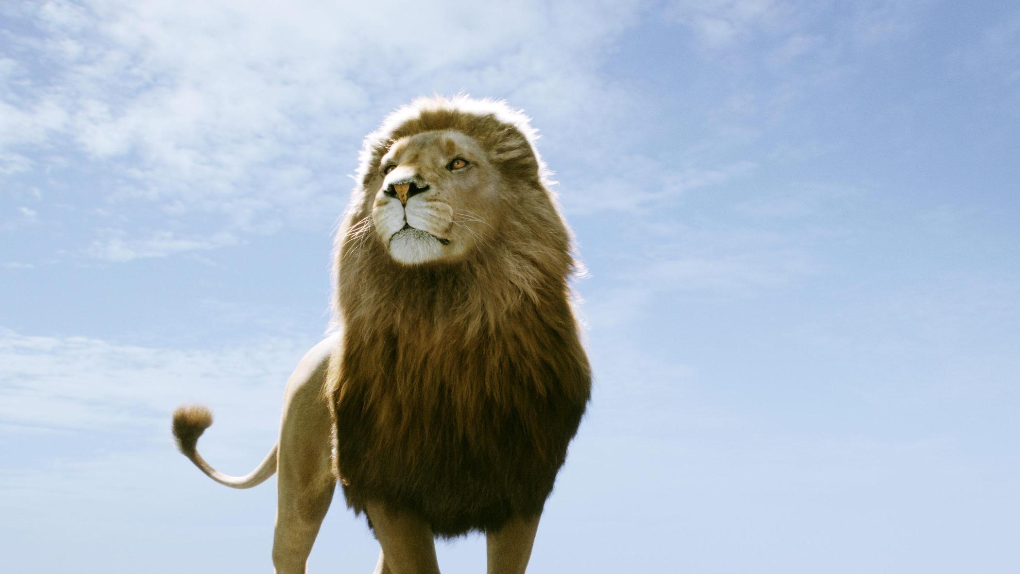 《纳尼亚传奇4》将重启该系列 主角全部换新演员