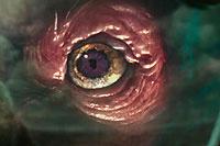 《忍者神龟2》朗格露真容