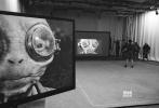 """《星球大战8:最后的绝地武士》(以下简称《星球大战8》)逐渐进入宣传期,相关的周边及宣传照也详细涌现。近日,一本名为""""银河中的英雄""""的儿童书曝光了该片的新照,芬恩(约翰·博耶加 饰)、蕾伊(黛西·雷德利 饰)以及萝斯三人同框,萝斯的出现竟为影片蒙上一层喜剧基调。"""