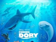 北美票房:《海底总动员2》夺冠《乌龙特工》居亚