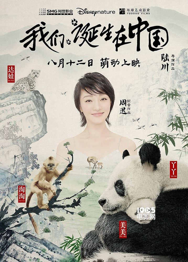 《咱们诞生在中国》定档8月12日 周迅加盟配音