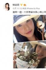 林志玲晒自拍容貌似少女 用美颜给上班族加油