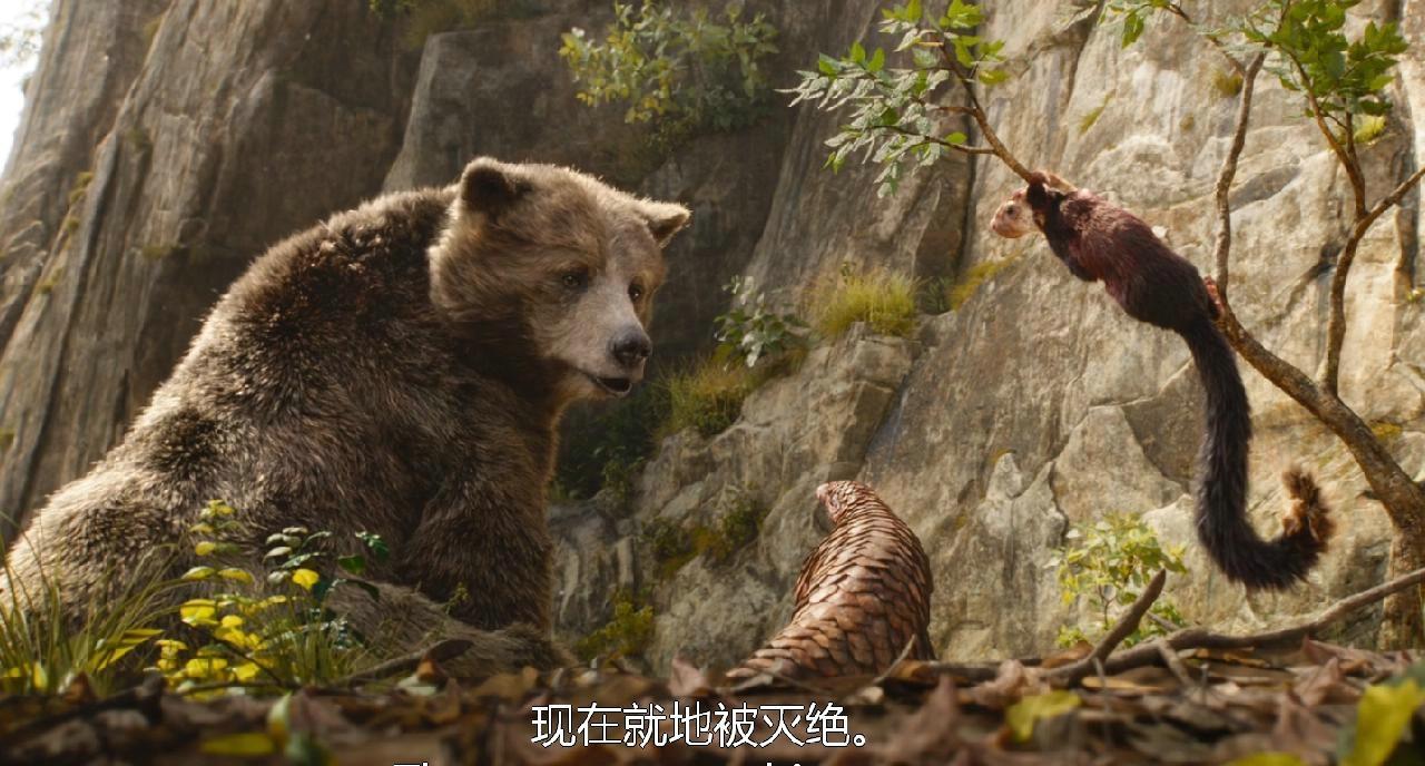 奇幻森林_电影剧照_图集