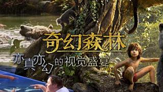 《奇幻森林》:亦真亦幻的奇幻冒险