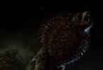 《神奇动物在哪里》近日发布了海量的剧照,各种奇异的生物鳞次栉比的出现,令人应接不暇。
