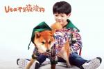《忠犬八公》团队中日合拍新片 萌宠小柴催泪回归