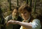 由华纳兄弟电影公司出品、J.K.罗琳首任编剧的《神奇动物在哪里》,将于11月25日登陆内地银幕。