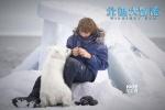 《北极大冒险》定档12.30