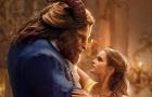 原来《美女与野兽》的故事竟然是这样演变的!