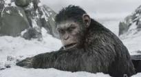 《猩球崛起3:终极之战》预告片 猿族崛起