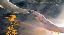 史航酷评好莱虎和国产狼 印度电影日解密崛起之道