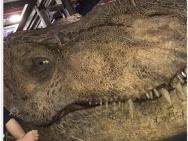 《侏罗纪世界2》曝海滩片场照 导演宣布正式杀青