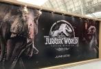 环球的《侏罗纪世界:失落王国》(以下简称《侏罗纪世界2》)在伦敦授权展曝光一款最新banner,如今2017年已经进入深秋,粉丝们与电影人都在展望将在2018年上映的一系列d8899尊龙娱乐游戏,《侏罗纪世界2》无疑是其中十分抢眼的一个。