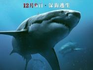 美国沙龙网上娱乐《鲨海》定档12.8 首款沙龙网上娱乐暗藏深海鲨机