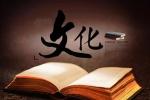 张颐武:中国崛起需要更加有力的文化指引鼓励