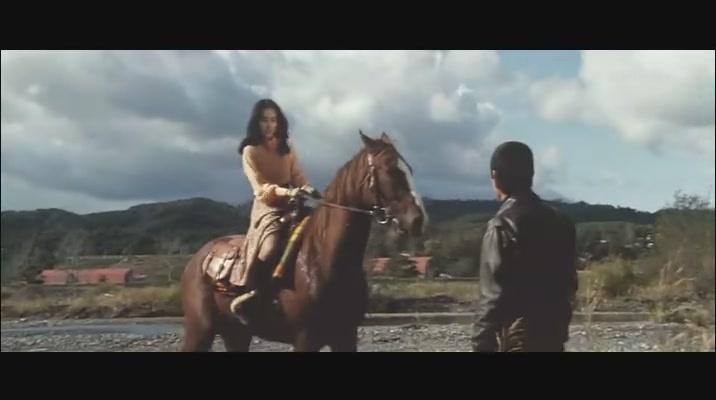 日本坐爱情节电影_《追捕》与《杜丘之歌》 一首歌想起一部电影