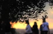 走进多彩的加泰罗尼亚 解读多面体的电影与文化