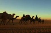 走进骆驼背上的百态苏丹 感受五彩斑斓的民族风情