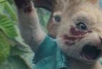 """由美国索尼哥伦比亚电影公司、索尼动画联合出品,威尔·古勒执导的电影《比得兔》正在内地各大影院热映中,影片上映6天迎来票房破亿,相信在即将到来的周末又要掀起新一轮的""""吸兔""""热潮。影片今日发布特别版《Remember the name》MV,兔子家族变身爱豆组合花样秀可爱,萌贱的画面和魔性的歌词,让人忍不住循环播放。"""