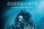 《水形物语》票房告捷 创六年来奥斯卡获奖片首次