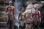 诺莱坞了解一下?索尼投拍非洲剧集 灵感来自黑豹