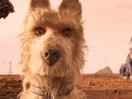 《犬之岛》曝原片片段 神秘包裹引发狗狗大战