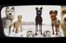 今日影评|我想养只狗!韦斯·安德森的银幕想象
