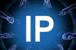 """1小时来让你了解:什么叫做""""后""""IP爆款时代"""