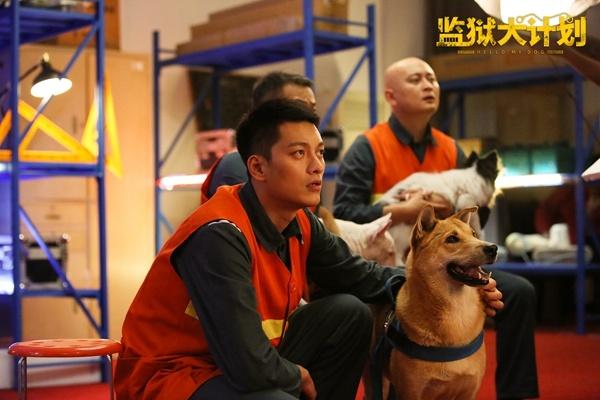"""《监狱犬计划》曝""""上线""""海报 院线联动网络播出"""