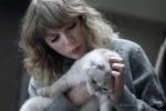 音乐剧《猫》将拍电影版! 爱猫少女霉霉或出演