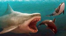 科幻漏洞重重 这个《巨齿鲨》你也太不挑食了!
