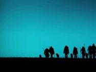 《阿尔法:狼伴归途》明日上映 吴秀波等大咖力荐