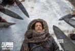 史前冒险巨制IMAX 3D影片《阿尔法:狼伴归途》正在全国热映,好评如潮,观众认可度极高。电影单日票房、上座率、场次和排片仅次于超级IP《碟中谍6:全面瓦解》,上映形势一片利好。