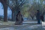 电影《阿拉姜色》今日公布了全新的定档海报和预告,正式宣布影片将于10月26日全国公映。