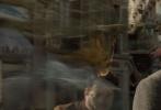 由《哈利·波特》作者J.K.罗琳全新创作的《神奇动物:格林德沃之罪》日前发布中国定制预告,更多波澜壮阔的魔法奇观震撼来袭,令人叹为观止。驺吾、嗅嗅、马形水怪等神奇动物集体亮相,驺吾放大招更是霸气十足。