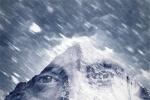 拔叔新片《北极》即将首映 揭幕海南岛国际电影节
