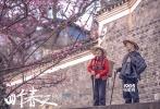 """12月18日,由""""北漂大叔""""陆庆屹导演的电影《四个春天》曝光""""山歌""""版预告片与同名主题海报。FIRST青年影展短片季评委周冬雨接棒赵薇、黄渤,加入助力《四个春天》的行列中,为预告片献声,清新动人的旁白伴随影片中父母日常相处的种种画面,描绘出爱情最纯粹的模样。凭借对家庭本真生活的深情记录,《四个春天》在收获诸多感动的同时,亦在专业电影平台获得8.8分的高分评价。据悉,电影《四个春天》即将在12月20日开启全国路演,而全国45场点映也将于12月22、23日全面开启,持续传递温暖力量。"""