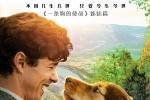 命中注定! 《一條狗的回家路》終極預告搶先治愈_好萊塢_電影網_ozwitch.com