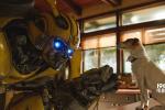 《大黄蜂》超9亿 《白蛇》跻身国产动画票房前十