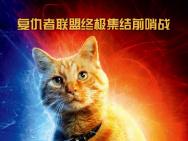 电影《惊奇队长》发布中文角色海报 大橘C位锁死