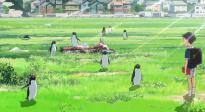 日本动画电影《企鹅公路》发布中字预告