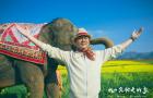 《我的寵物是大象》發布定檔預告