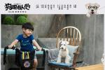《狗眼看人心》曝创意对比海报 安吉深情告白爱犬