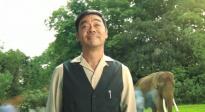 《我的寵物是大象》發布《康定情歌》MV